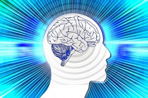 Pixabay - Cerveau - rays-516326_640