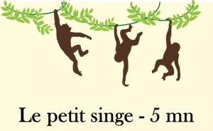 le-petit-singe-video