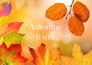 automne-video
